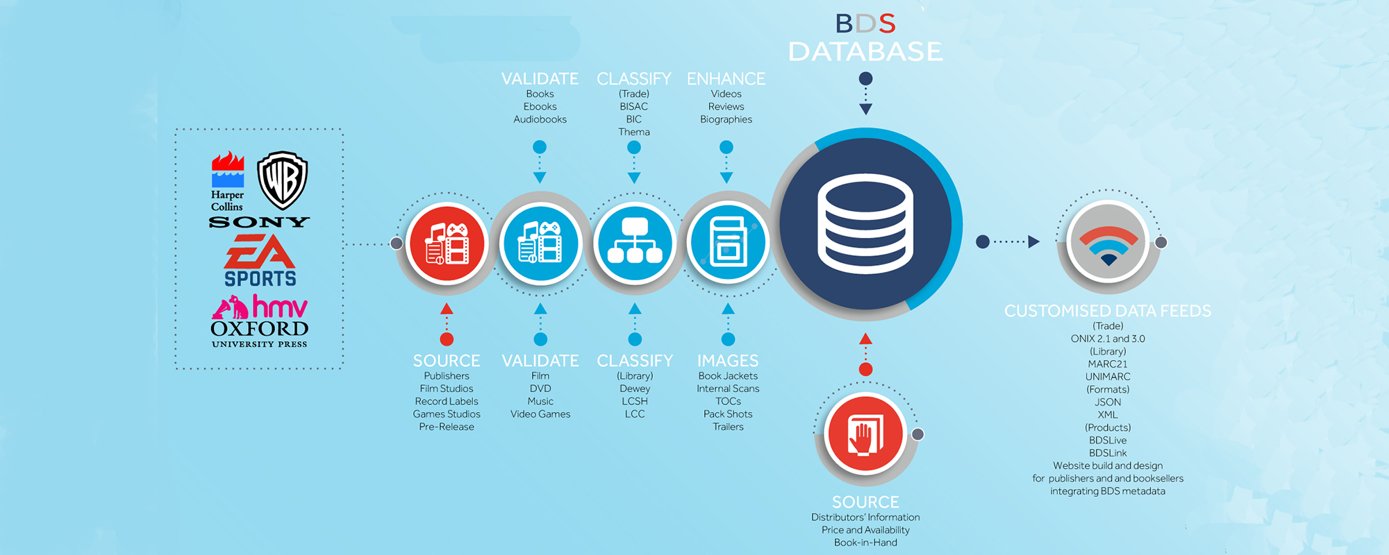 bds database infographic